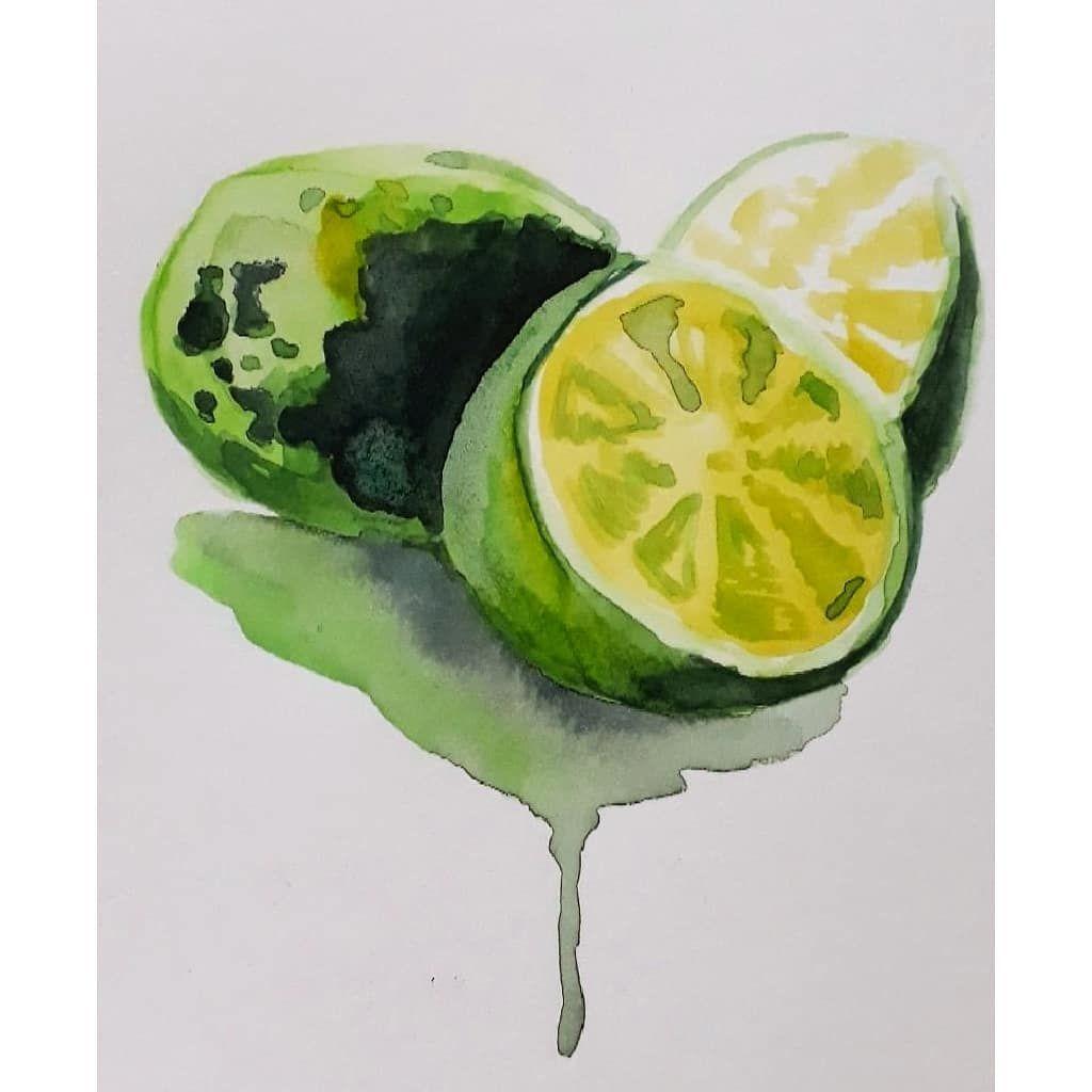 Limoes Limon Watercolor Art Arte Dasemana