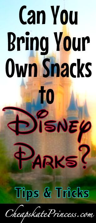 0838ca086ad Can you bring food into Disney parks  A guide to saving money on food at Disney  World