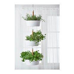 bittergurka hanging planter white home garden pinterest jardini re suspendue. Black Bedroom Furniture Sets. Home Design Ideas