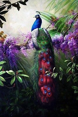 CHOP93 huge Animals Peacock 100/% hand-painted oil painting art canvas