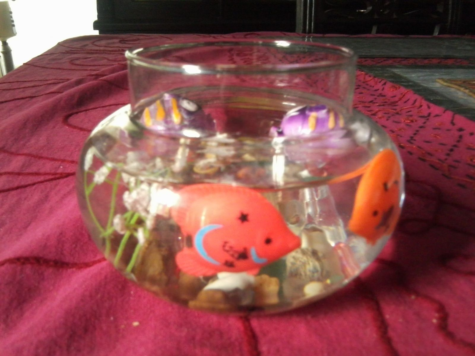Diy fish bowl you never need to care for craft