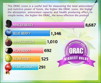 Maqui Berry Health Benefits Benefits Of Berries Health Berries