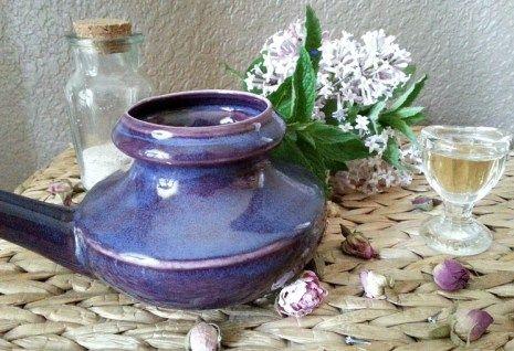 Natural Allergy Relief: Nasal Rinses, Eyewashes & Herbal Steams