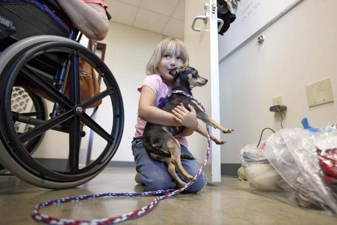 Update 2,217 pets adopted on Empty the Shelter Day in