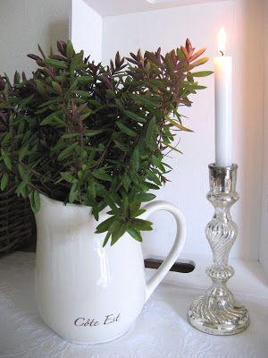 Fun vase