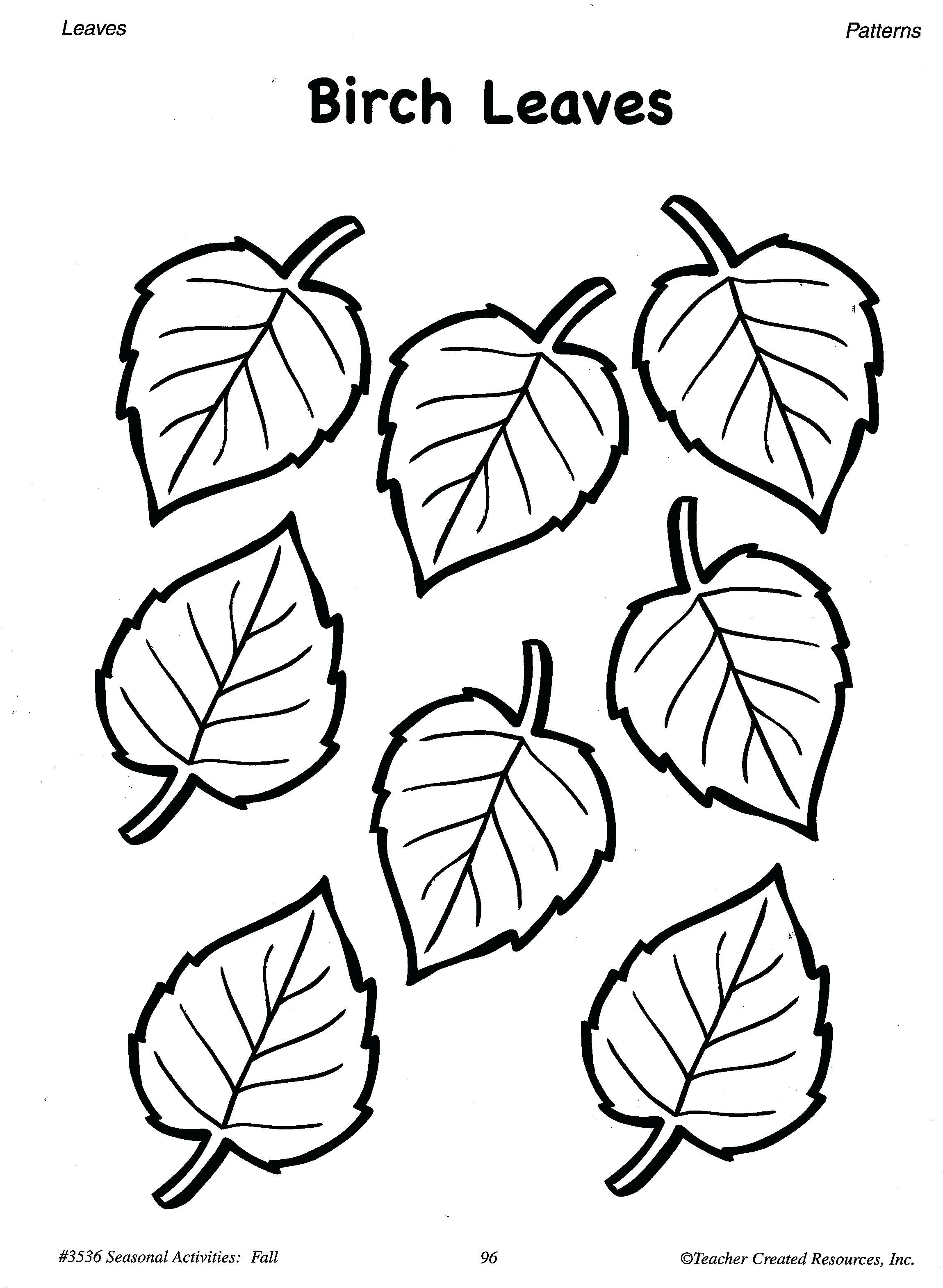 Image result for birch leaf | Leaf coloring page, Fall ...