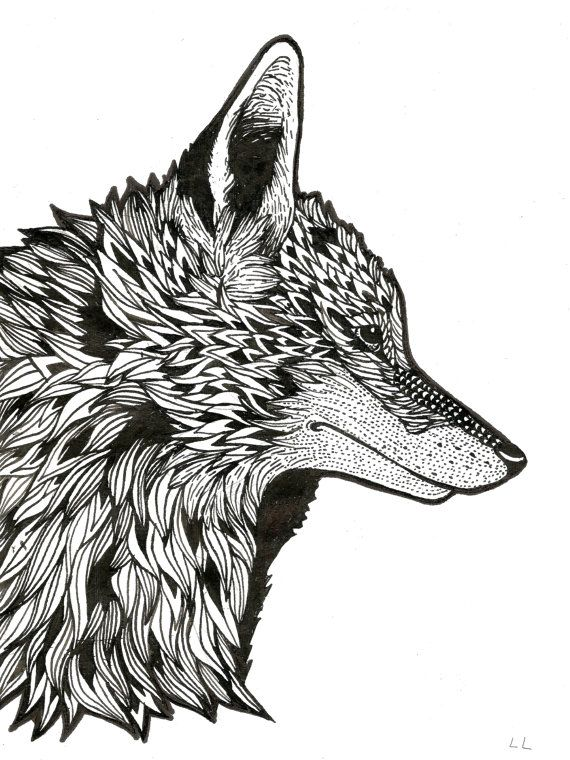 Fox Original A60 Illustration Drawing Patterned Detailed Nature Awesome Patterned Animals