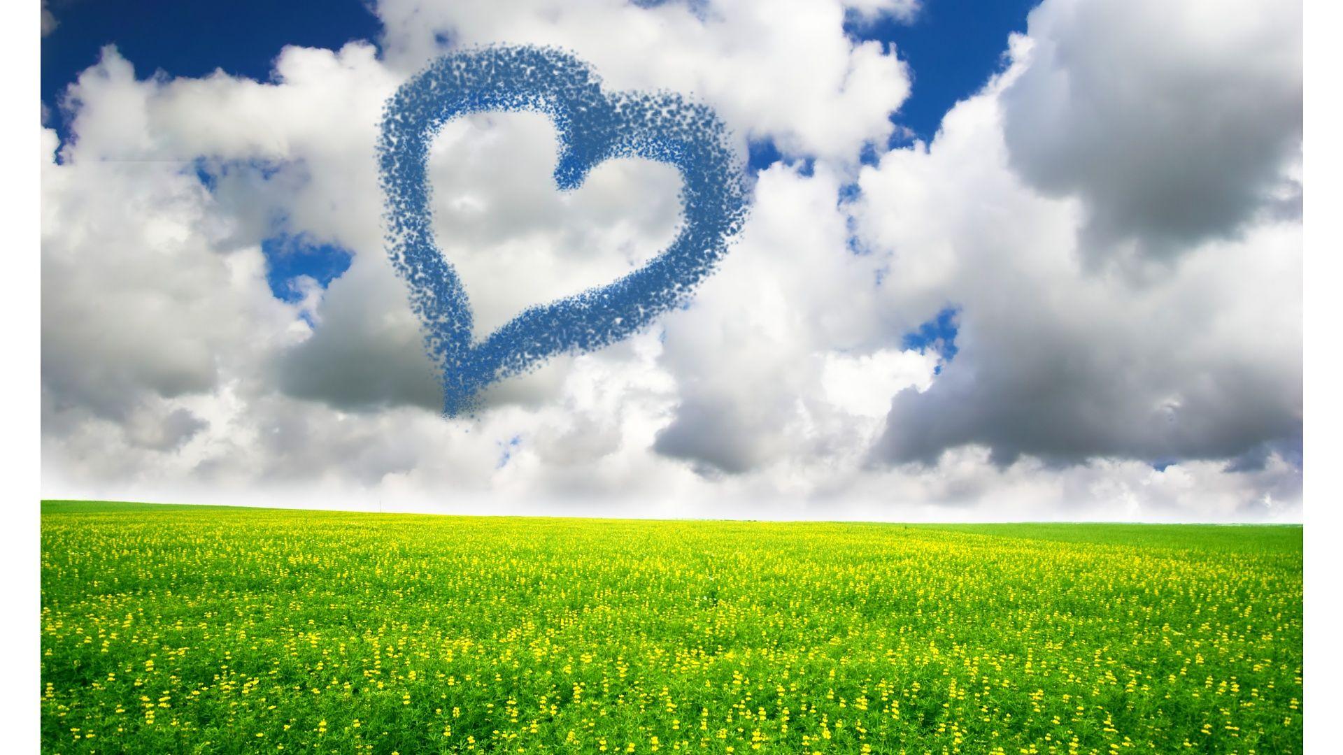 1920x1080 Sweet Heart Over Green Field Flowers Hd Wallpapers 1080p Full Hd Love Wallpaper Hd Wallpapers 1080p Green Fields