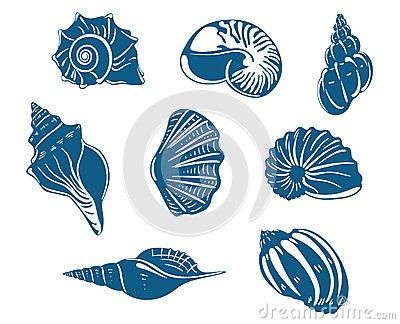 Blue shells and mussels set by Seamartini, via Dreamstime