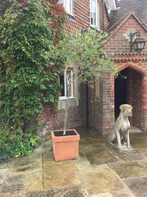Plants For Home Farm That Are In Storage At Rotherhill With Images Garden Sculpture Outdoor Decor Outdoor