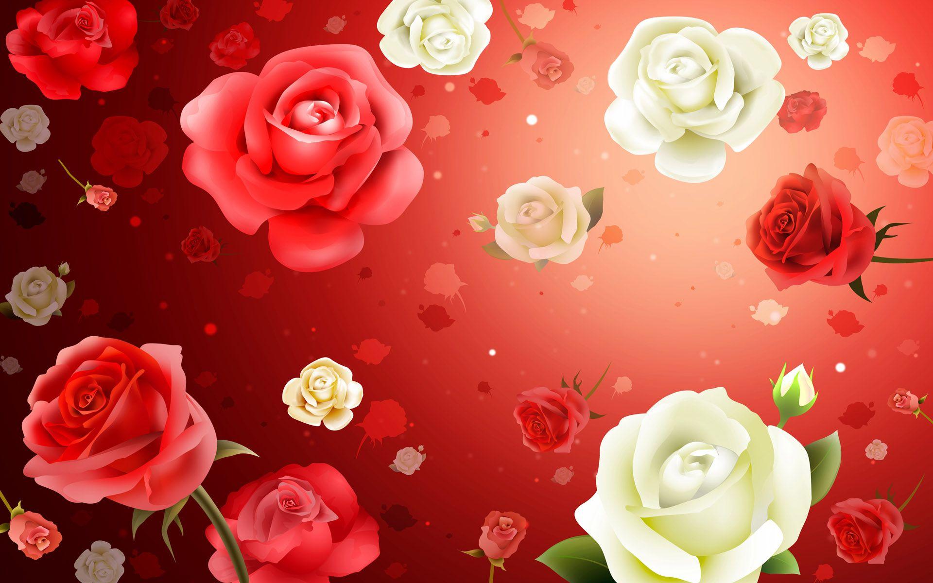 Red White Rose Hd Wallpaper For Desktop Creativity Hd Wallpaper