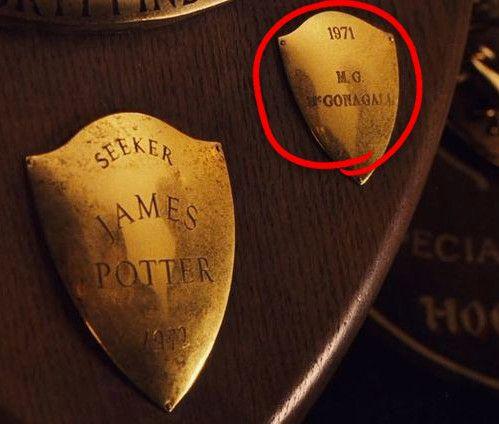 Vorsicht Potentielle Spoiler Harry Potter Jokes Harry Potter Movies Harry Potter Facts