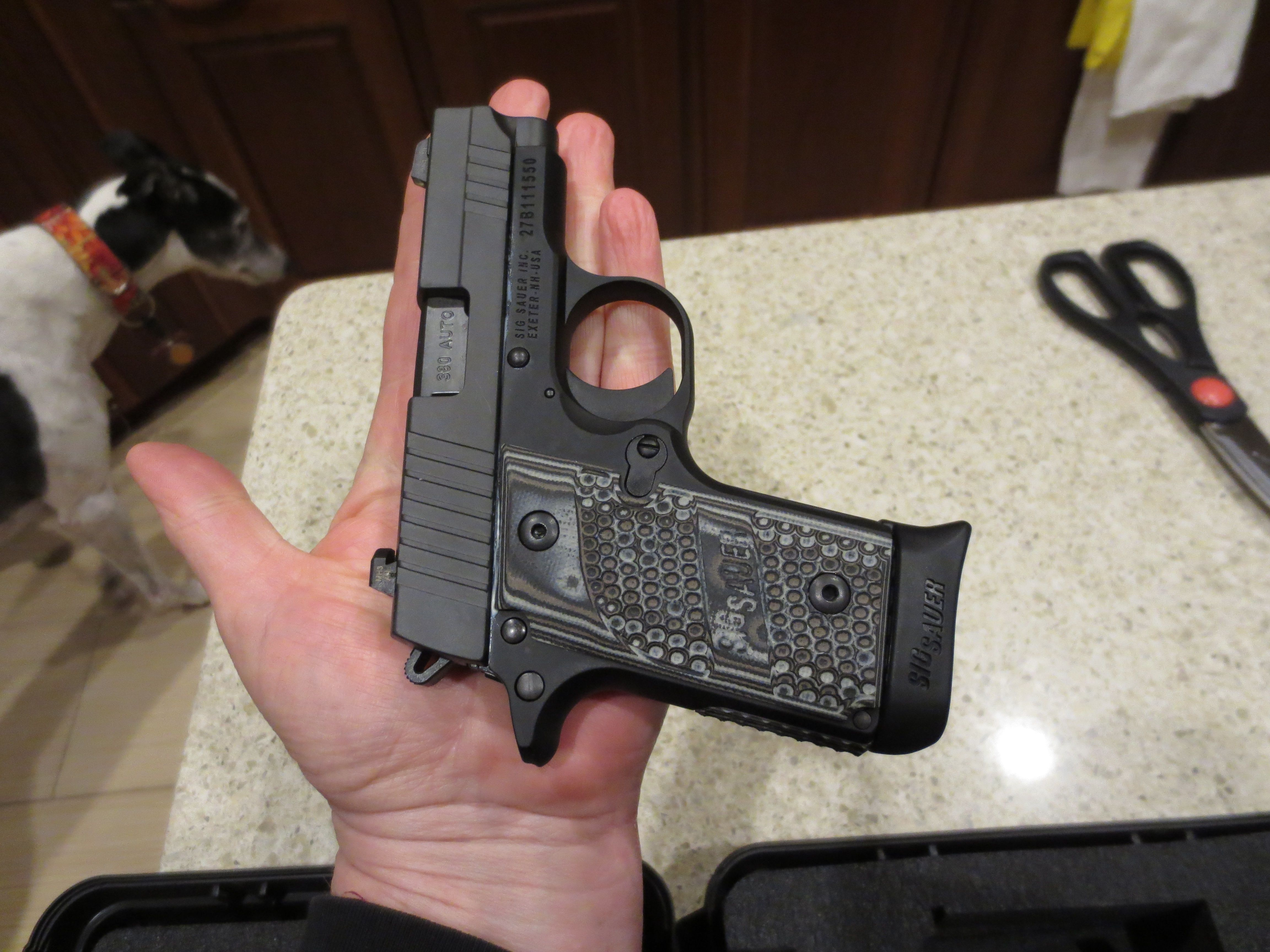 sig sauer p238 380 pistol with an extended magazine so tiny my hand almost hides it i love this little gun oh and those grips  [ 4608 x 3456 Pixel ]