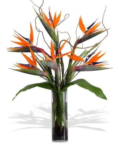 The Bird Of Paradise Tropical Flower Arrangements Fresh Flowers Arrangements Ikebana Flower Arrangement