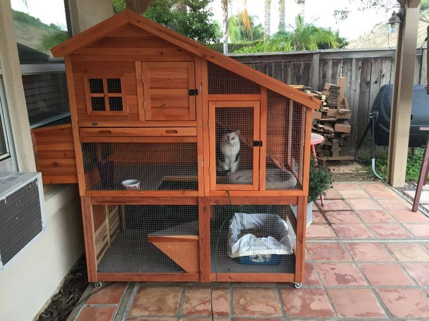 Bought a chicken coop, raised it up and added a floor. It opens ...