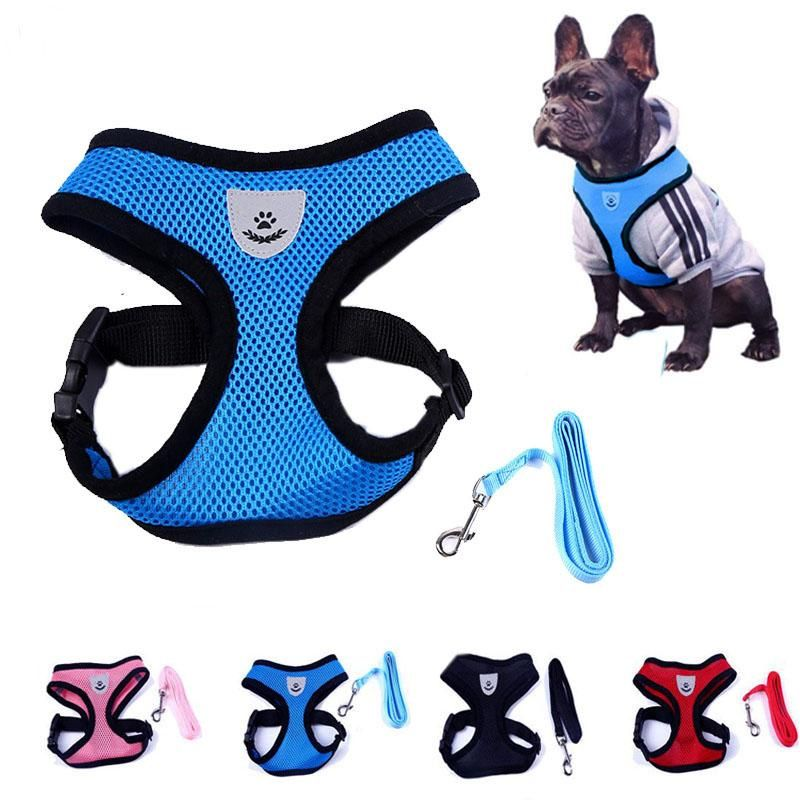 Free Shipping Type Dogs Feature Personalized Reflective Padded
