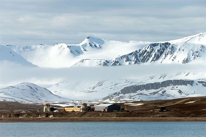 Bilder från Svalbard och Ny-Ålesund - Naturfotograf Hasse Andersson