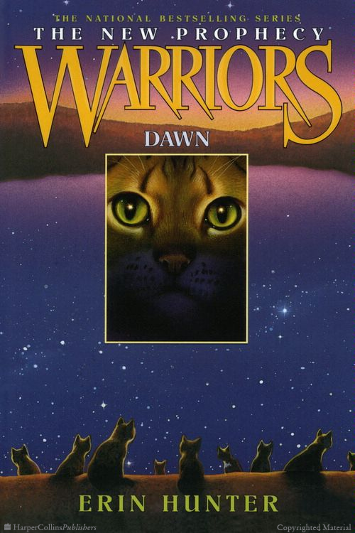 Warriors The New Prophecy book 3 Dawn Warrior cats