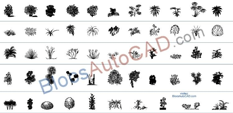 54 Haute Qualité Autocad Blocs Autocad Dwg Plantes Vue