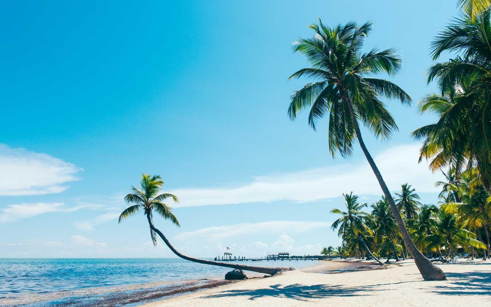 Florida S Best Vacation Destinations Cool Places To Visit Best Vacation Destinations Florida Attractions