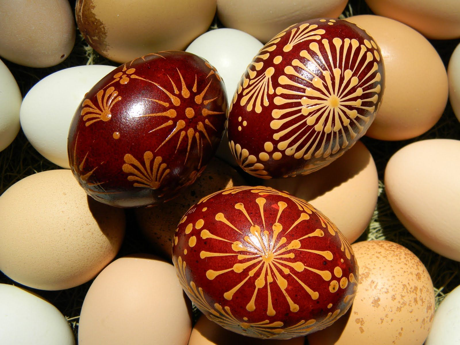 Polish Blown Eggs Easter Eggs Egg Decorating Easter Egg