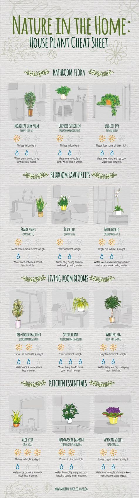 Photo of Indoor Plants Cheat Sheet #Infographic