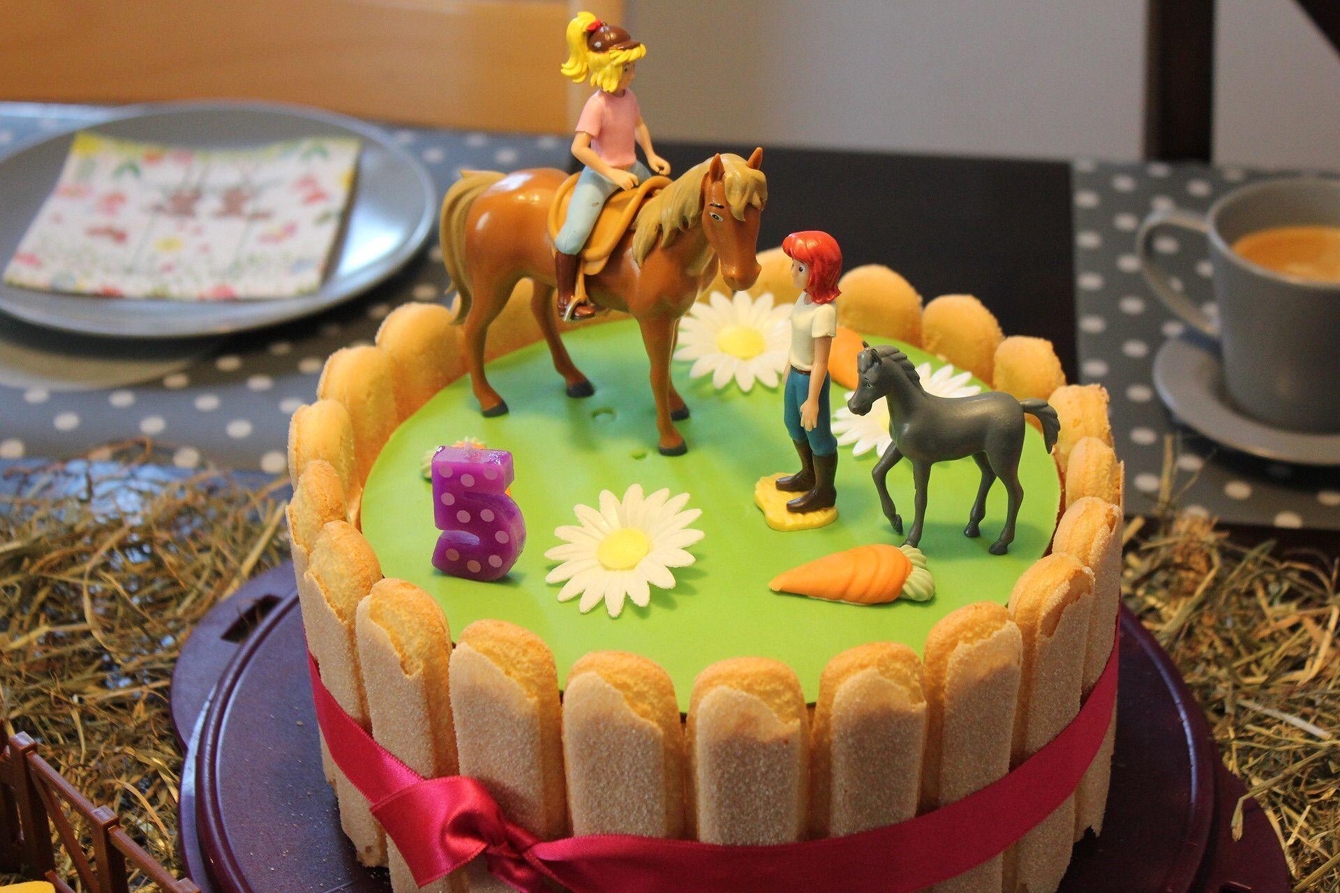 Funfter Geburtstag Bibi Und Tina Regenbogentorte Geburtstagstorte Pferdeliebe In 2020 Regenbogentorte Geburtstagskuchen Kinder Kuchen Kindergeburtstag Schnell