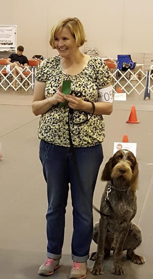 Houston World Series Of Dog Shows 2015 Training Your Puppy