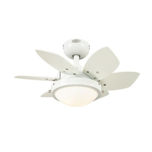 """Westinghouse Lighting 24"""" Quince 6 Blade Ceiling Fan"""