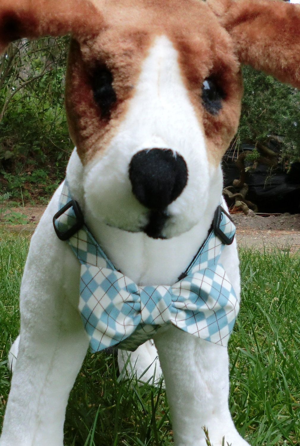 Dog Harness with Bow Tie | Cardozo | Pinterest