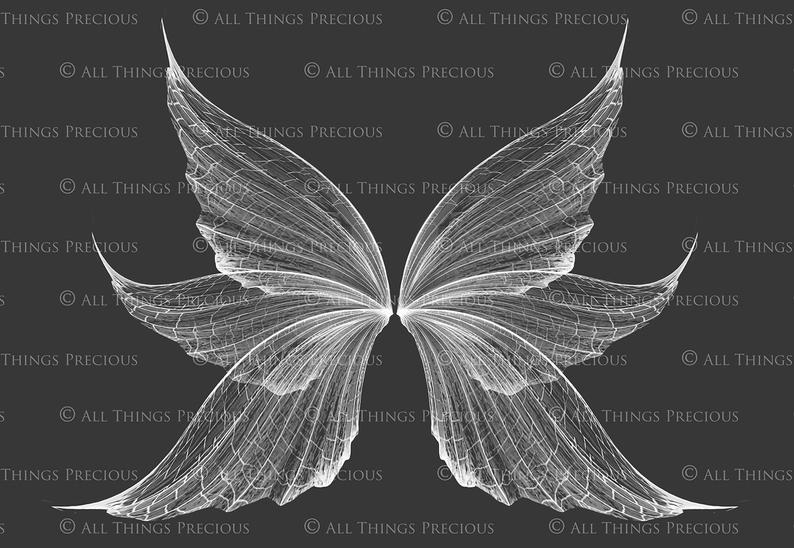 9 Png White Fairy Wing Overlays Set 9 Wings Fairy Overlay High Resolution Photography Realistic Wings Photoshop Overlays Fairy Wings Drawing Wings Drawing Fairy Wings