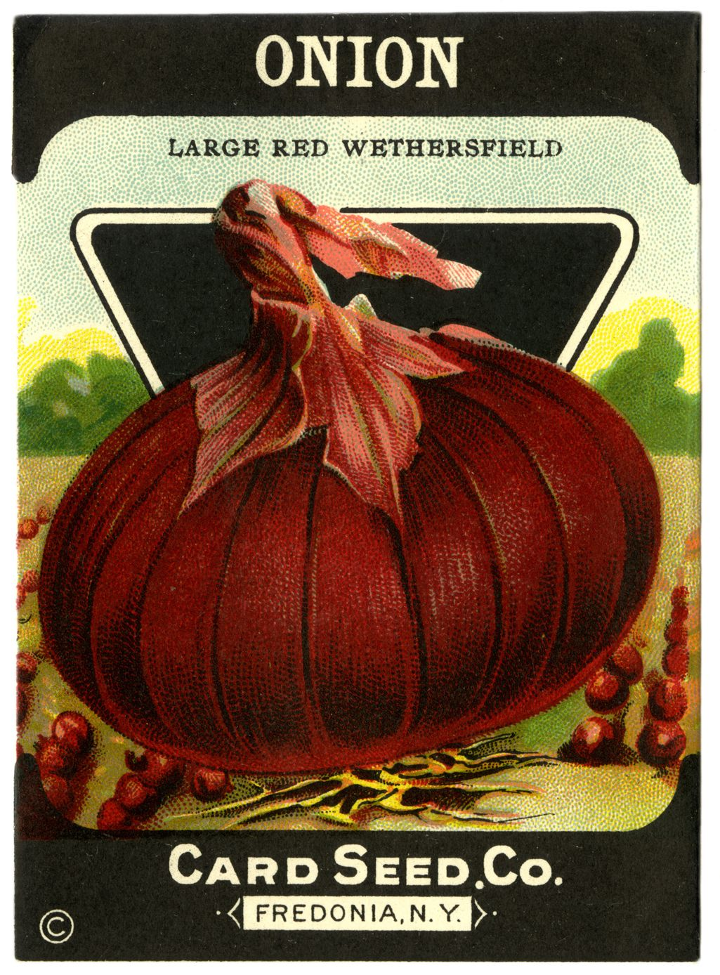 RED ONION Card Seed Packet