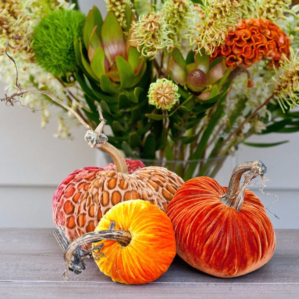 12+ Plastic pumpkin stems for crafts ideas in 2021