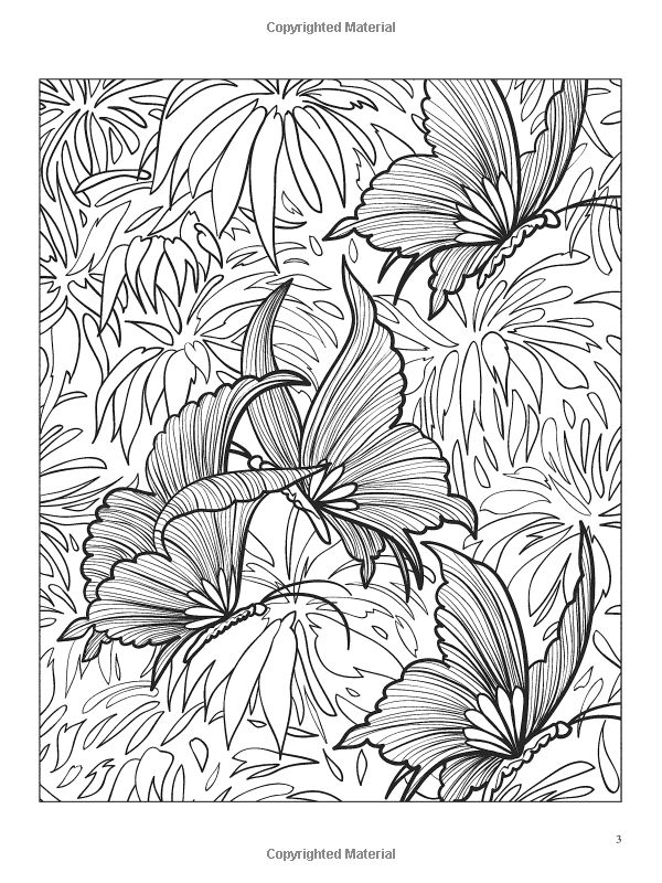 3 D Coloring Book Butterflies Jessica Mazurkiewicz Colouring PagesAdult