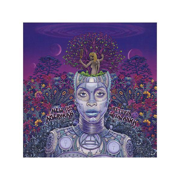 The Giant Peach - Erykah Badu - New Amerykah: Pt. 2: Return Of The Ankh, 2xLP Vinyl, $17.98 (http://www.thegiantpeach.com/erykah-badu-new-amerykah-pt-2-return-of-the-ankh-2xlp-vinyl/)