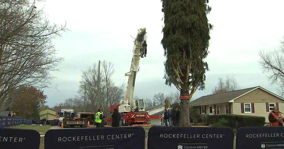 TODAY Top Stories  Rockefeller Center Christmas tree due to arrive Saturday The Rockefeller Center Christmas tree is being  View More You are in the right place about New...