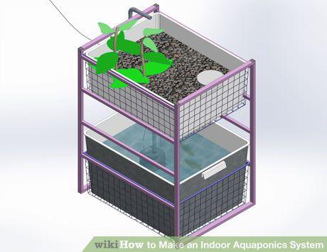 Make an Indoor Aquaponics System | DIY | Indoor aquaponics ...