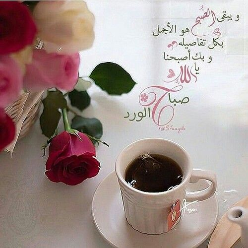 Pin By Abdulla Sanad On منظر طبيعي Beautiful Morning Messages Good Morning Images Good Night Messages