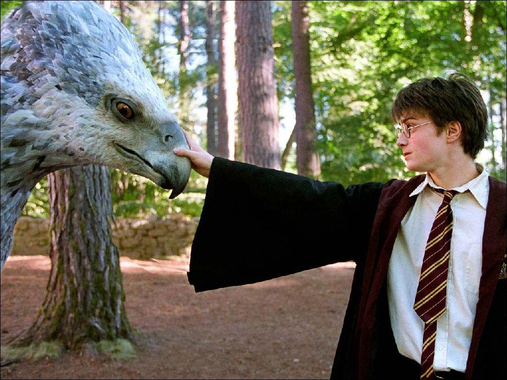 Harry Potter and the Prisoner of Azkaban Image: POA <3