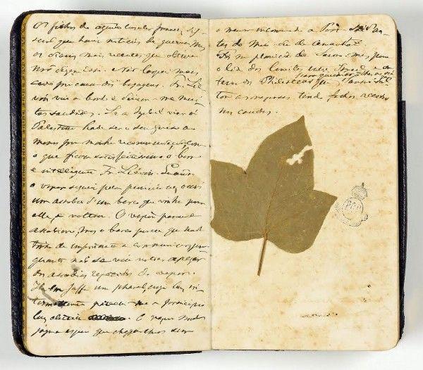Uma das facetas do imperador Pedro II era a de um homem, no mínimo, muito curioso.