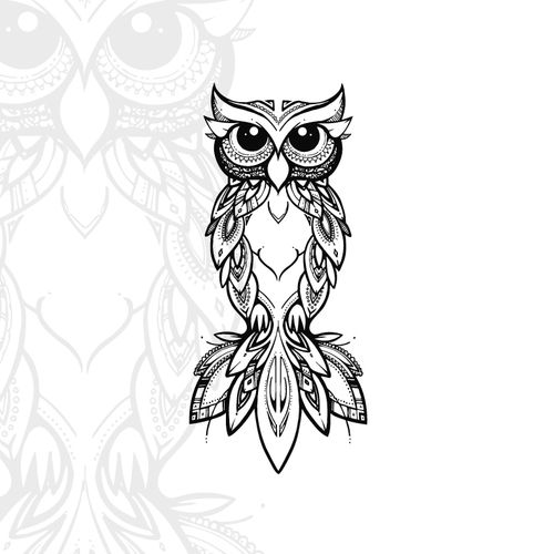 Hello Coco X Owl Digital File Owls Drawing Bird Drawings Owl Artwork