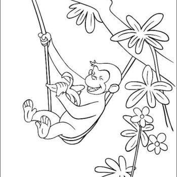 emperor tamarin coloring page | ... Eating Banana Hobby Coloring ...