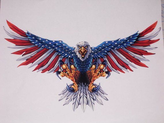f2a6b950d442 Wings out Attack Bald Eagle American Flag RV motorhome Window Graphic Decal  decals Graphics Car Truc