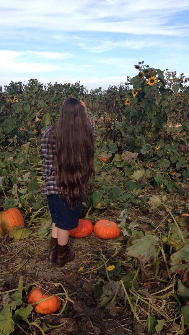 Fall //