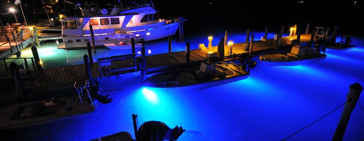 the accent available free trouble led solution lighting lights dock versatile so looking lg are most amphibian for a you ocean if oceanled product on completely