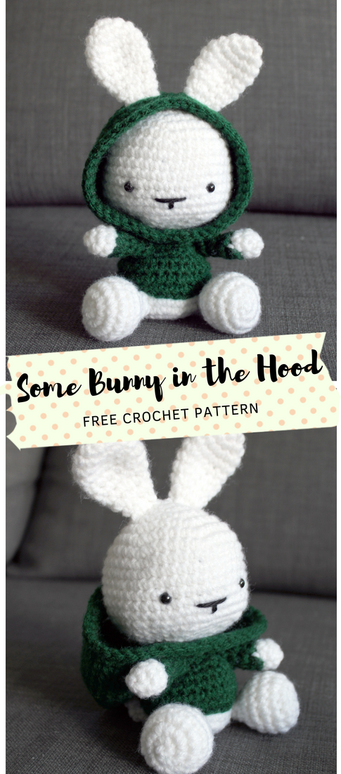 Photo of Some Bunny in the Hood Crochet Pattern