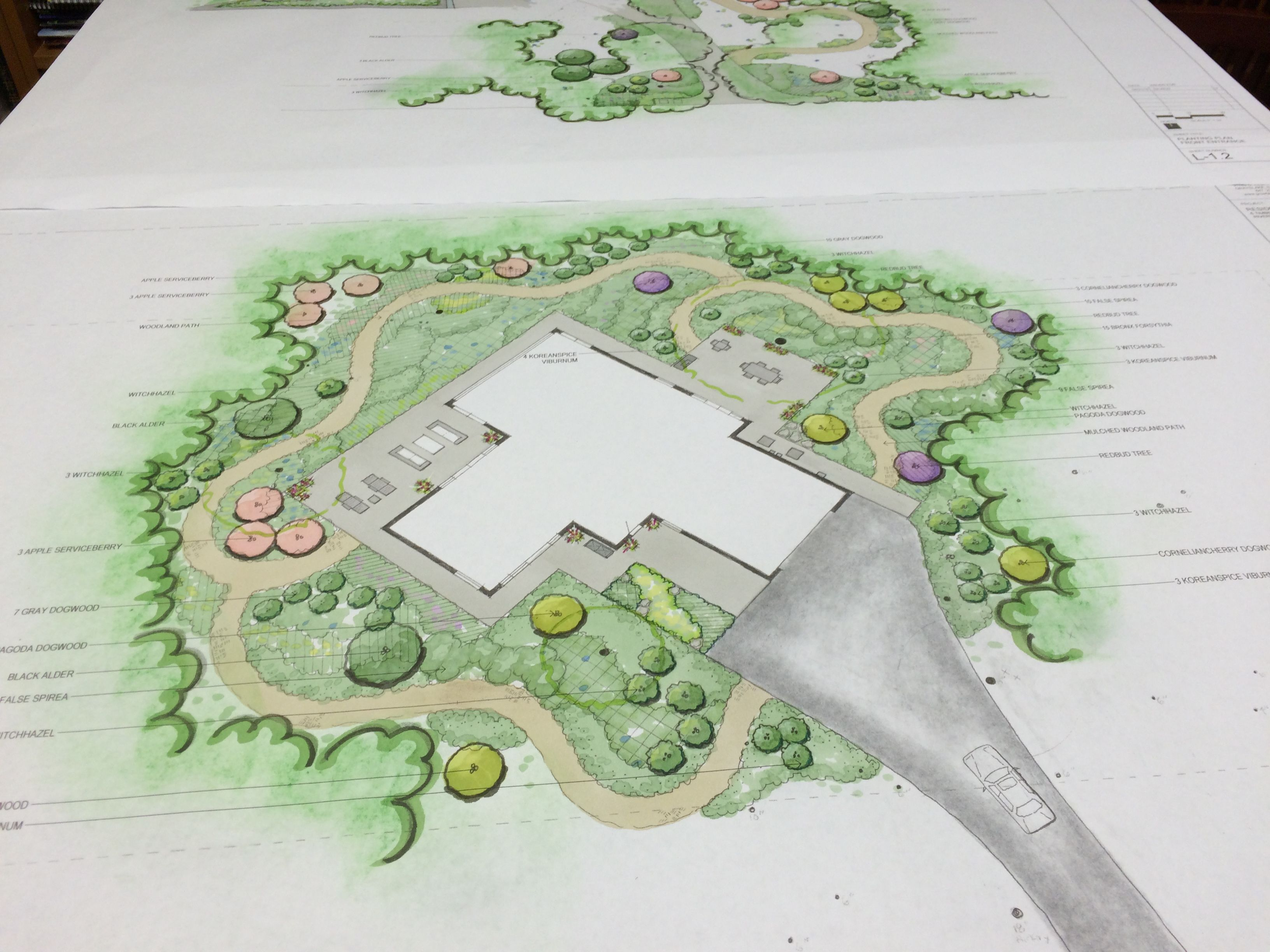 Riverwoods Woodland Paths Concept Plan