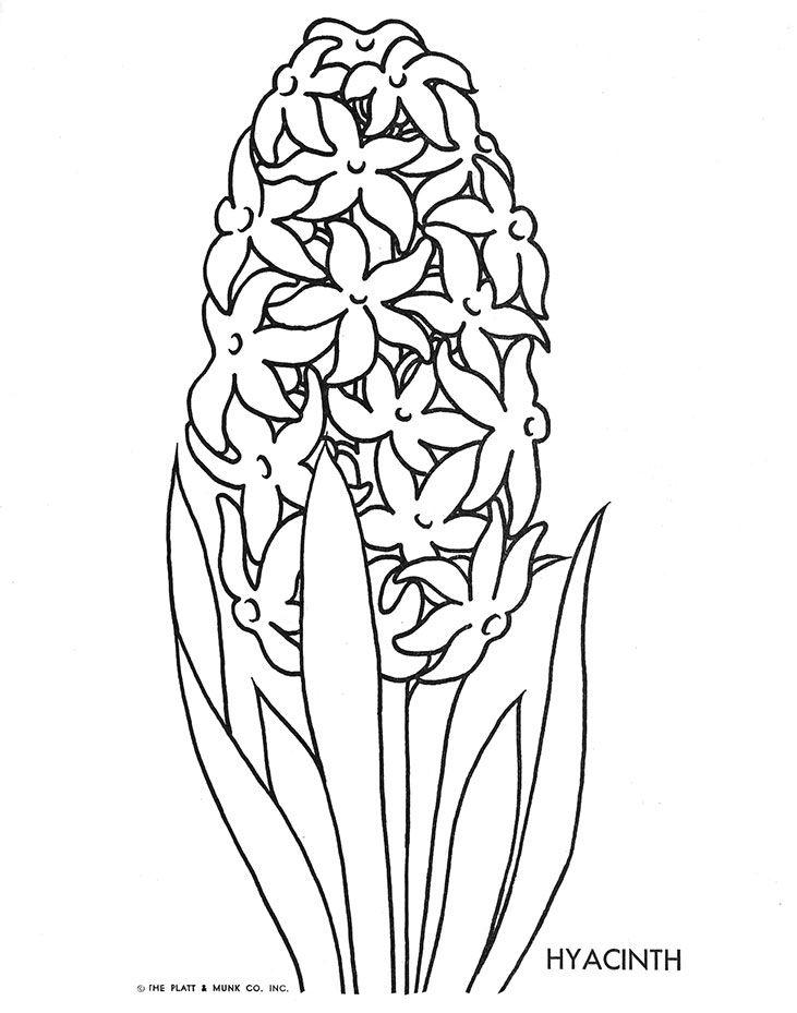 Flowers To Color Cvetochnye Raskraski Cvety Trafarety Dizajny