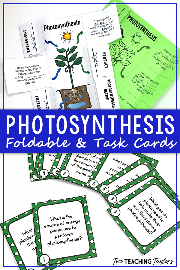 Use this printable, differentiated foldable notes resource