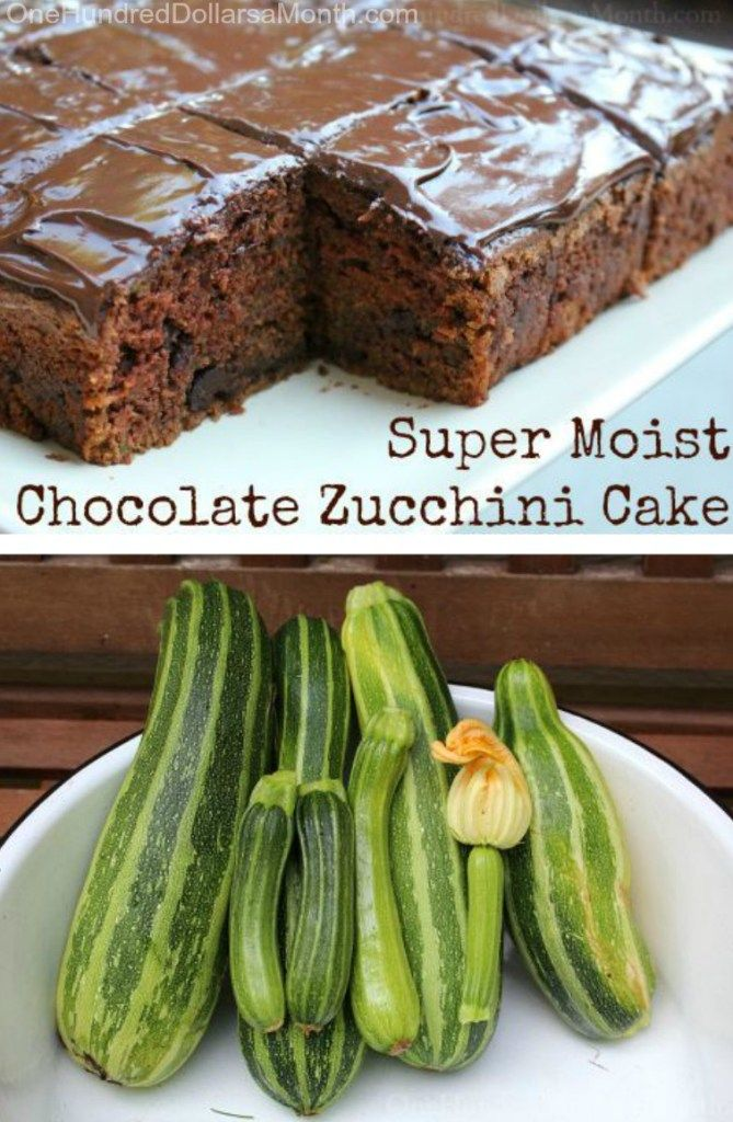 Super Moist Chocolate Zucchini Cake - One Hundred Dollars a Month